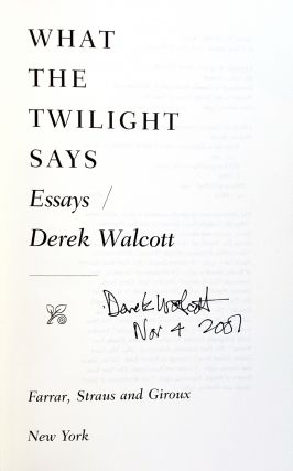 What The Twilight Says: Essays