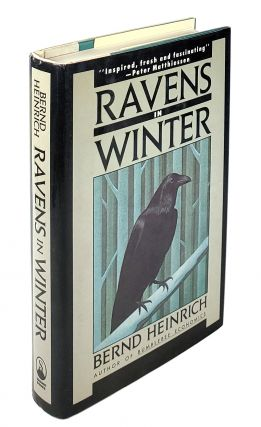 Ravens in Winter. Bernd Heinrich
