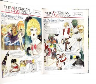 The Brinkley Girls: The Best of Nell Brinkley's Cartoons from 1913 - 1940