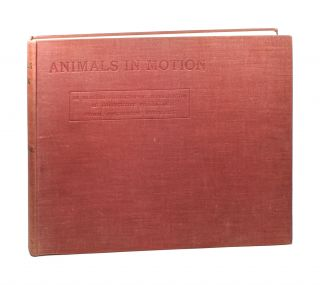 Animals in Motion...: An Electro-Photographic Investigation of Consecutive Phases of Muscular...